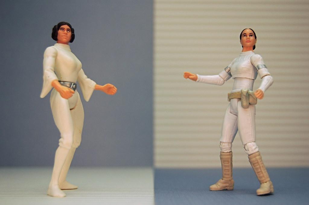 Leia Organa vs. Padmé Amidala (233/365)