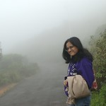 walk in the clouds, eravikulam national park