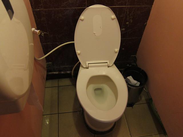 NAIA toilet