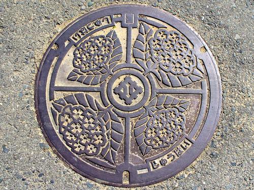 Fukui city,manhole cover 2(福井県福井市のマンホール2)