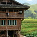 Traditional house in Longsheng Rice Terrace, Guangxi, China 龍勝棚田