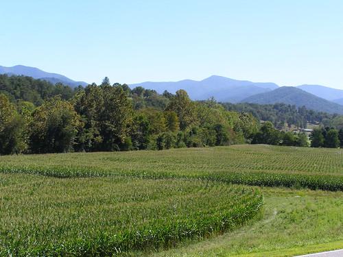 mountains fall nc corn maize blueridge appalachians barnardsville westernnorthcarolina bigivy melystu