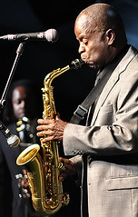 musician, saxophone, musical instrument, music, jazz, entertainment, saxophonist, brass instrument,