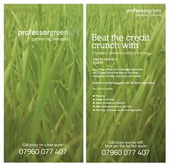 grass, wheatgrass, herb, flora, green, crop, advertising,