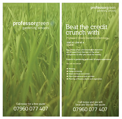 leaf(0.0), soil(0.0), plant(0.0), grass(1.0), wheatgrass(1.0), herb(1.0), flora(1.0), green(1.0), crop(1.0), advertising(1.0),