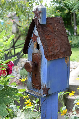 Birdhouse Blues