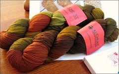 Autumn Ecstasy yarn