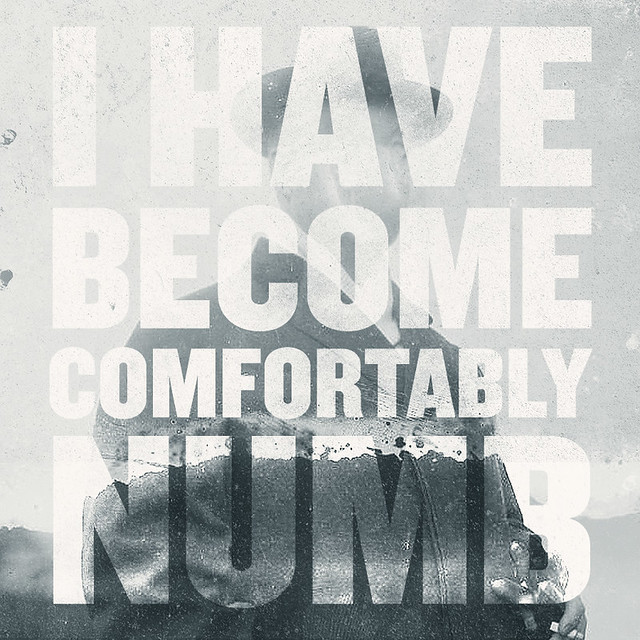 I Have Become Comfortably Numb.