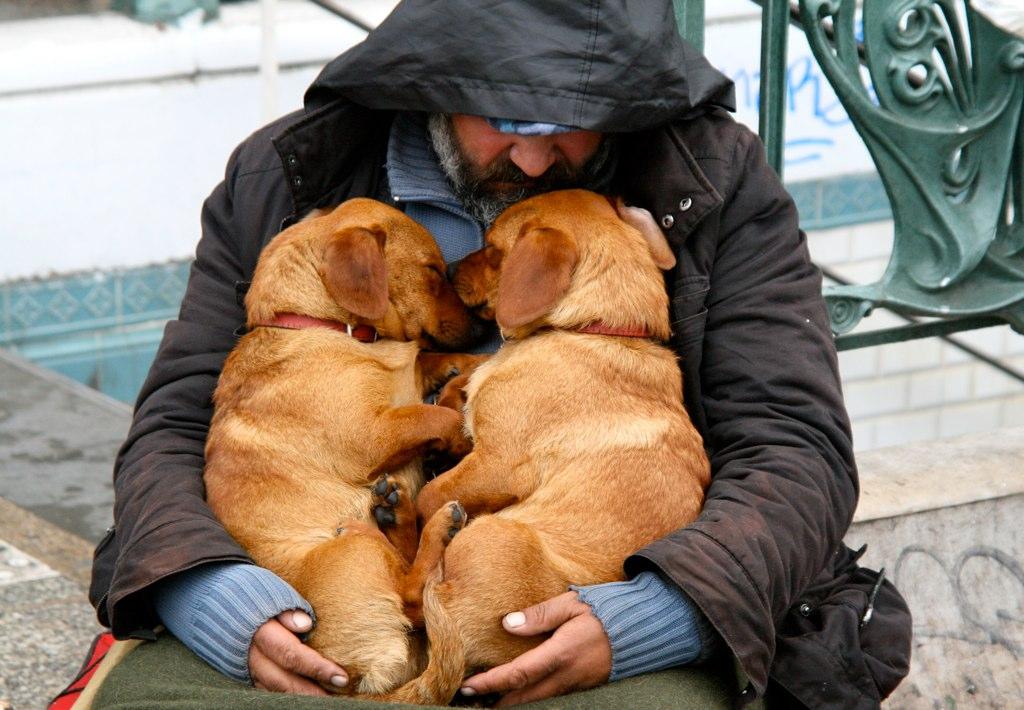 Sleeping Beggar's