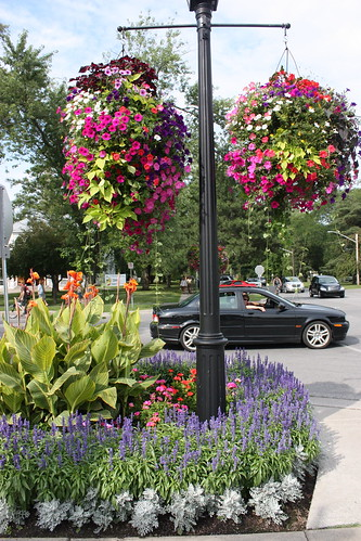 Hanging Flower Baskets With Lights : Kokopics pictures flower baskets hanging from street lights