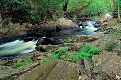 Brooks Falls,Kearney,Ontario