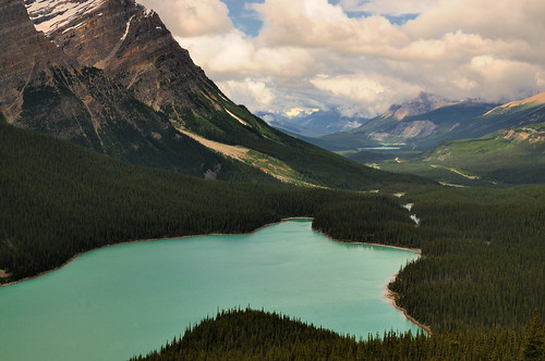 A different view of Peyto Lake in Banff,Alberta
