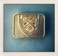 belt buckle, badge, buckle, brand,