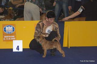 World Dog Show, Bratislava 2009