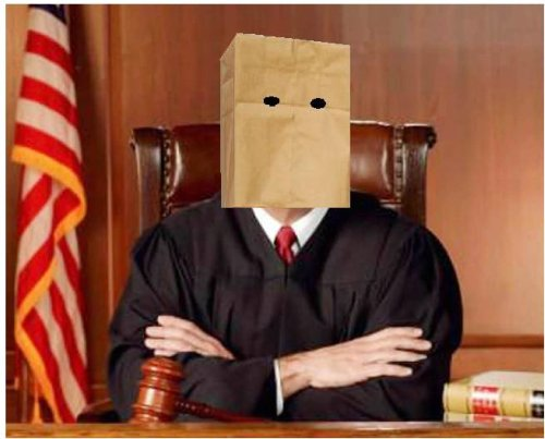 Mystery Judge
