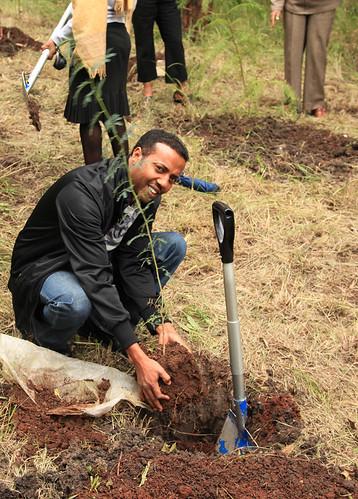 Apollo Habtamu Planting his tree at the KMIS tree planting day