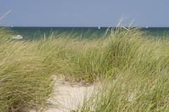 20100808 - Crosby Landing Beach