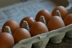 produce(1.0), egg(1.0), food(1.0), egg(1.0),