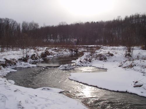 Lewis Creek - Starksboro  20040113_M19 Ice - P1010021
