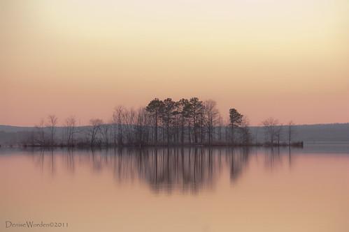 trees light sunset lake water canon island golden nc afternoon northcarolina goldenhour jordanlake 450d