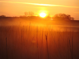 Sunrise over marsh in Big Stone County, MN