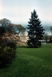 (Slide 36) (March 1966) (White House)