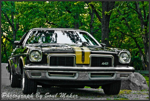 1974 oldsmobile cutlass 442 flickr photo sharing for 1974 cutlass salon for sale