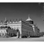 #019 Schlosspark Sanssouci s/w I