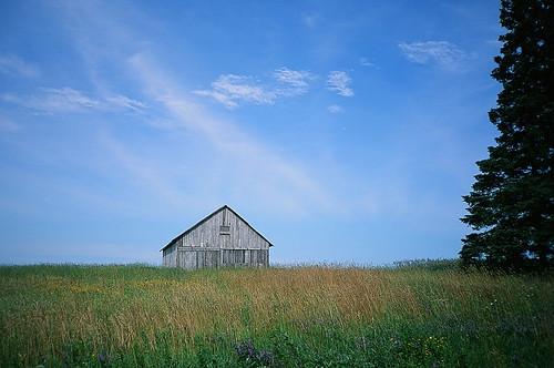 lake ontario canada film field clouds rural landscape highway colorful fuji meadow bluesky olympus slidefilm greatlakes velvia brightcolors xa 50 slides technicolor velvia50 548 stmarysriver stjosephisland