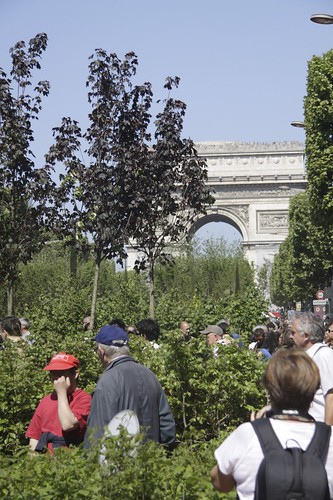 Nature Capitale on the Champs-Elysees