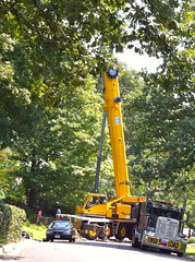 drilling rig(0.0), asphalt(1.0), vehicle(1.0), tree(1.0), transport(1.0), construction equipment(1.0), crane(1.0),