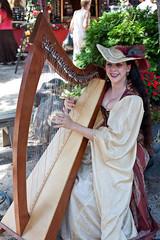 clãrsach, harp, string instrument,