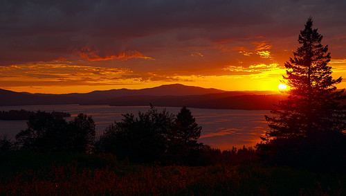 sunset lake tree maine rangeley