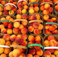 plant(0.0), apricot(1.0), peach(1.0), produce(1.0), fruit(1.0), food(1.0), nectarine(1.0),