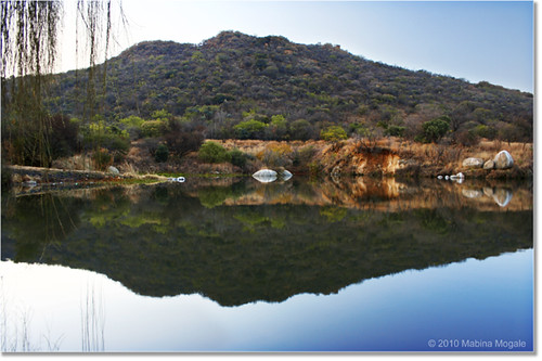 Water reflection: Medunsa Dam