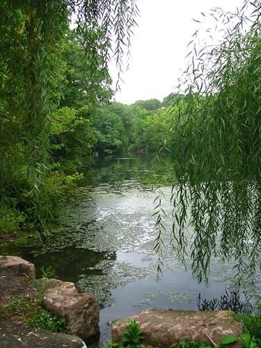 Brightwood Park, Westfield, New Jersey by Bogdan Migulski
