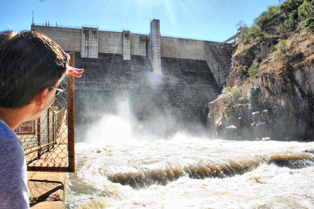 Burdekin Dam Crocodiles Burdekin Dam