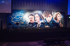 Fantastic Beasts and Where to Find Them Special Fan Night in a Day Before the Release