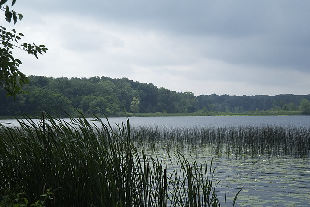 Three Lakes