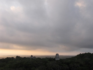 Tikal at Dawn from Temple 4