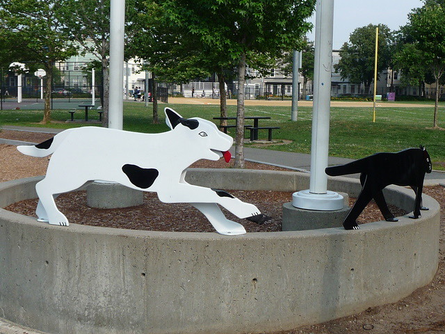 Wellington-Harrington - White Dog Black Cat, Frisoli Youth Center, Donnelly Field, Cambridge, MA