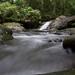 Small photo of Darien stream