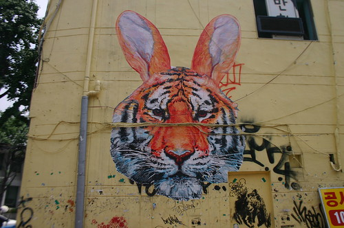 Tiger Rabbit in Hongdae, South Korea
