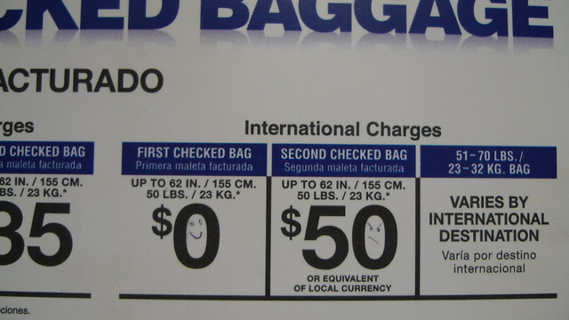 American airlines baggage policy musical instruments
