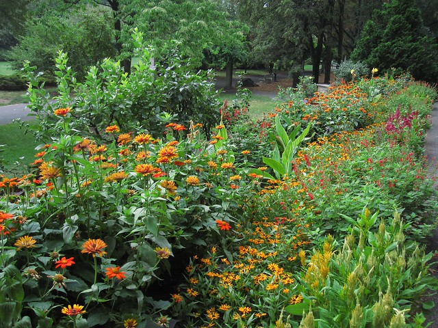 One of the annual borders in the Osborne Garden featuring lots of bold color. Photo by Rebecca Bullene.