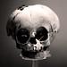 Skull by edorourke