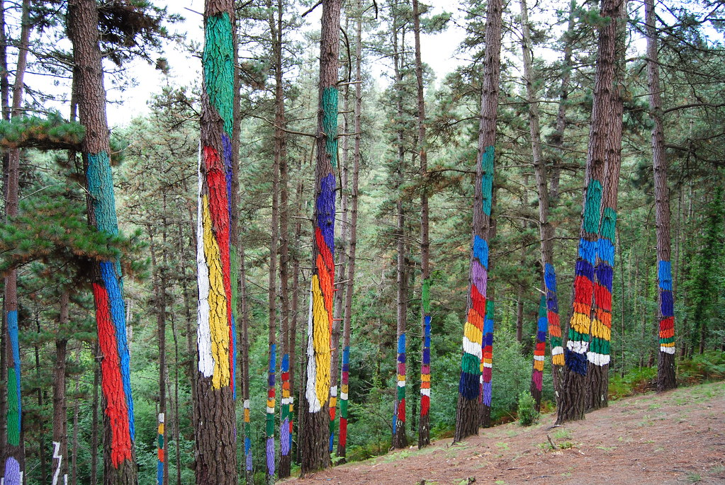 Oma Forest - Ibarrola