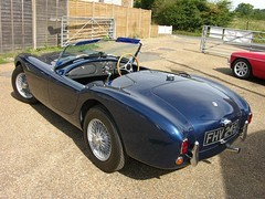 austin-healey 100(0.0), austin-healey 3000(0.0), ac ace(0.0), race car(1.0), automobile(1.0), vehicle(1.0), classic car(1.0), land vehicle(1.0), ac cobra(1.0), supercar(1.0), sports car(1.0),