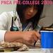 Pre-College 2009