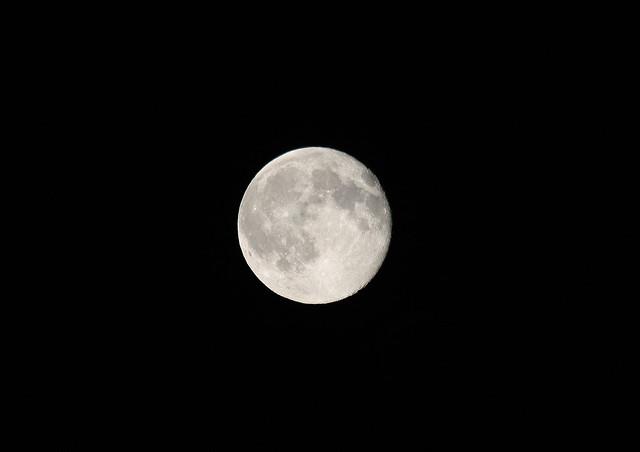 Full moon tonight. | Flickr - Photo Sharing!